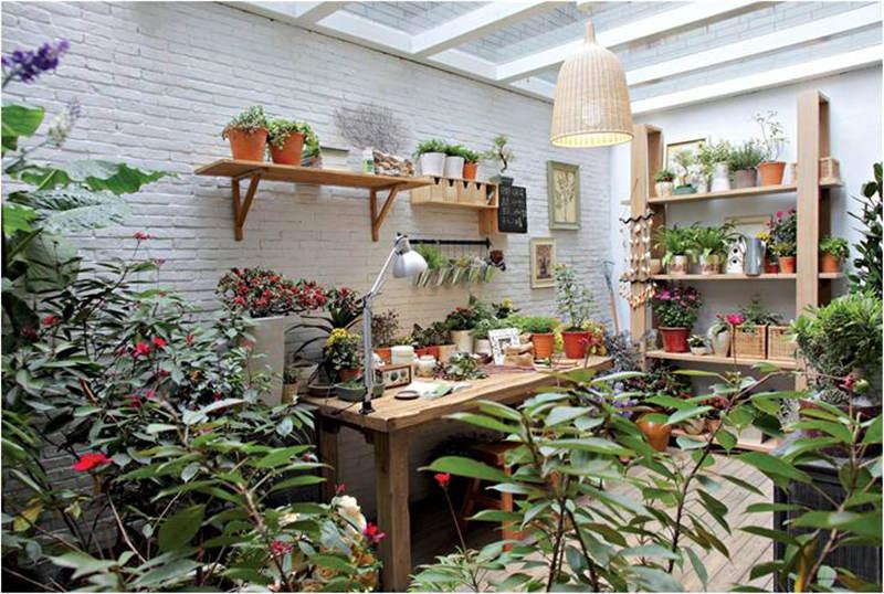 阳台植物摆设技巧